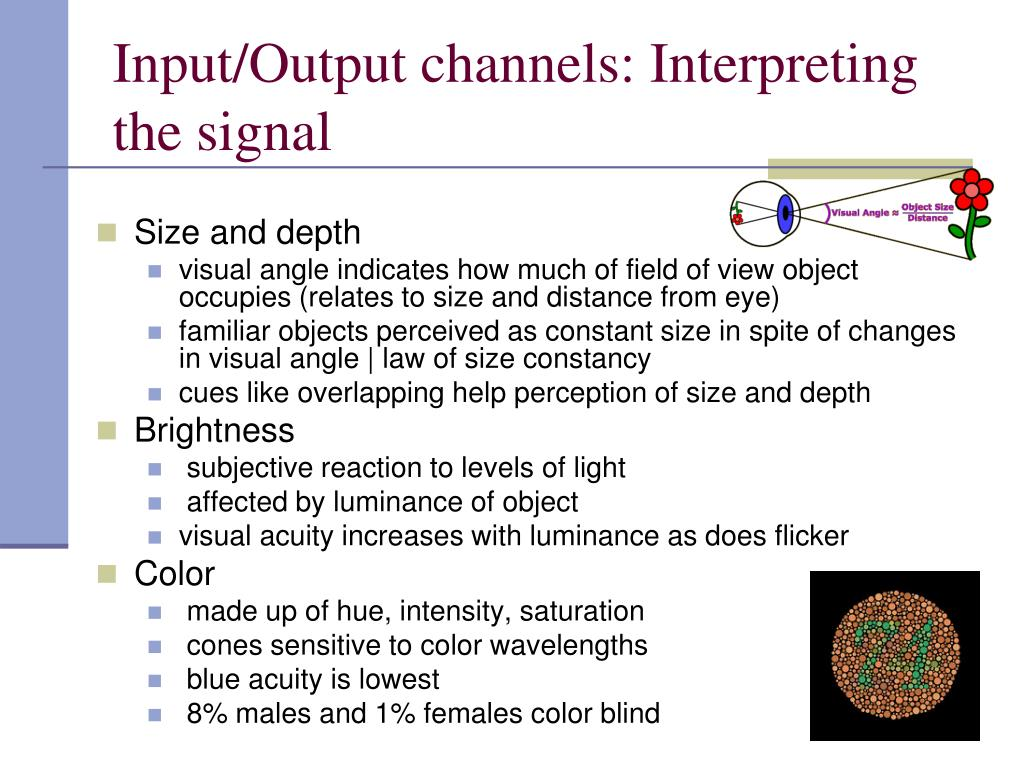 Input/Output channels: Interpreting the signal