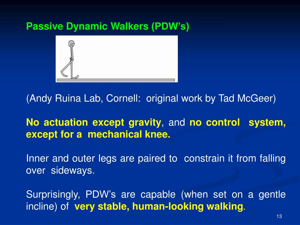 Passive Dynamic Walkers (PDW's)