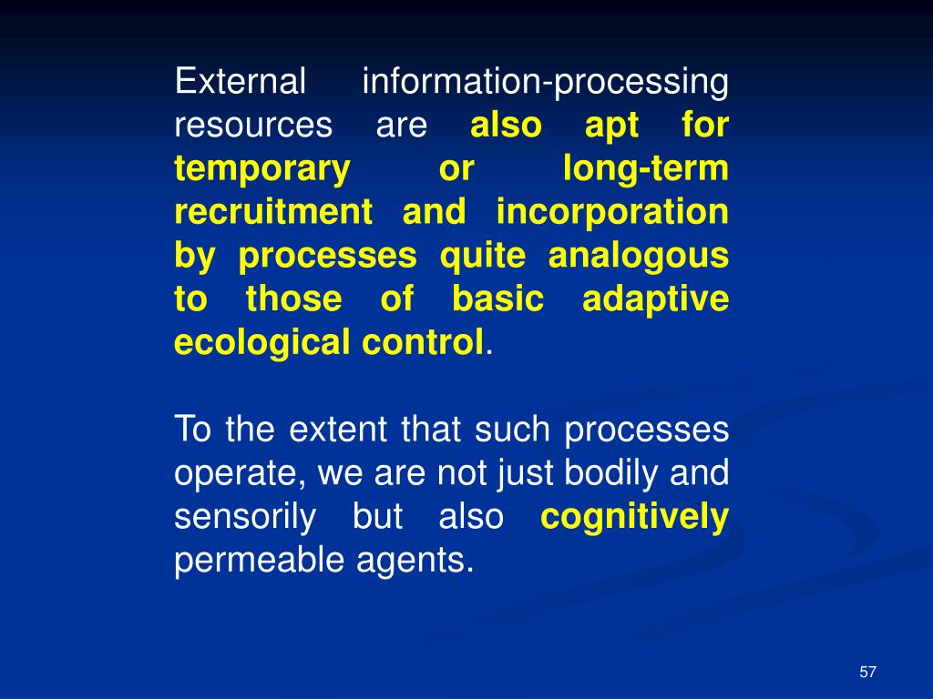 External information-processing resources are