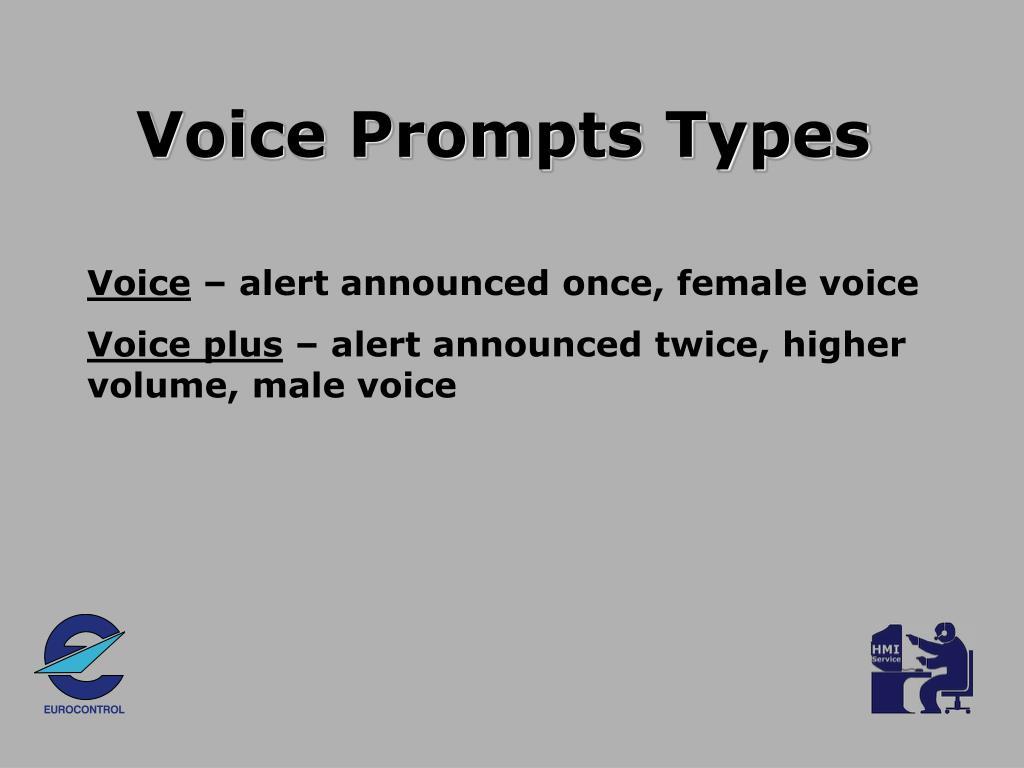 Voice Prompts Types