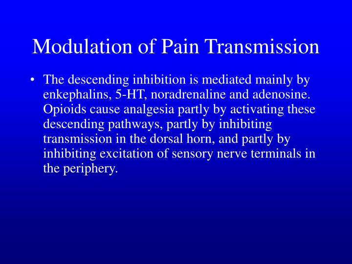Modulation of Pain Transmission