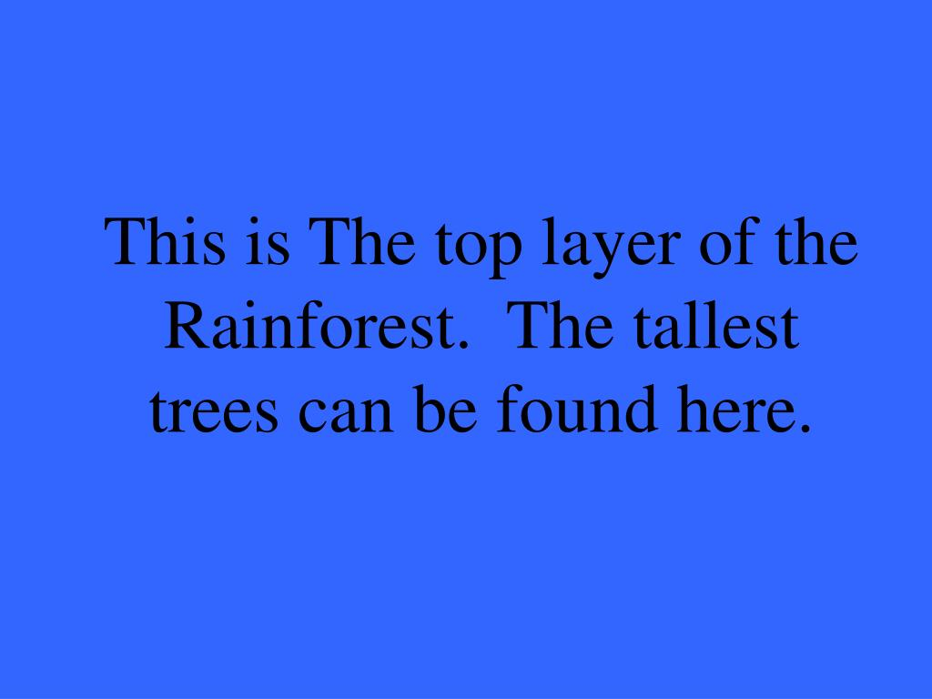 This is The top layer of the Rainforest.  The tallest trees can be found here.