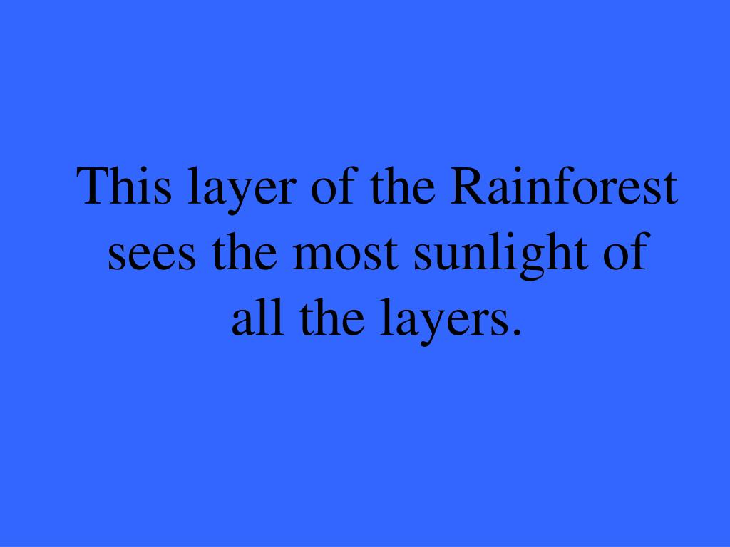 This layer of the Rainforest sees the most sunlight of all the layers.