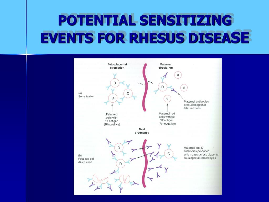 POTENTIAL SENSITIZING EVENTS FOR RHESUS DISEA