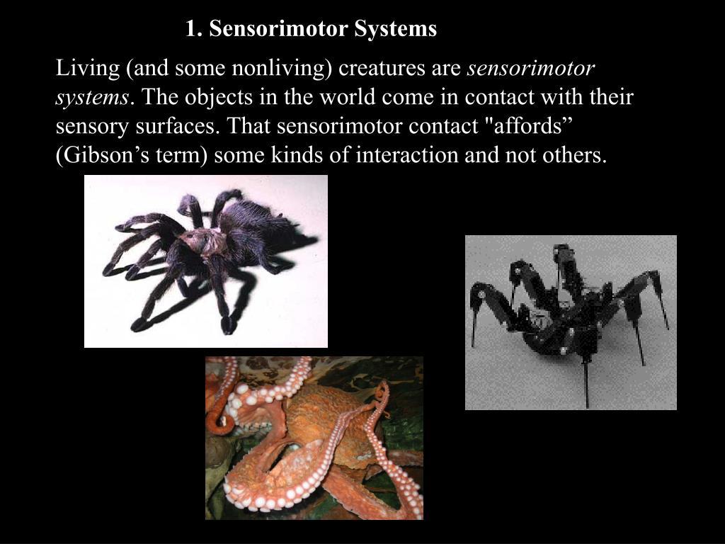 1. Sensorimotor Systems