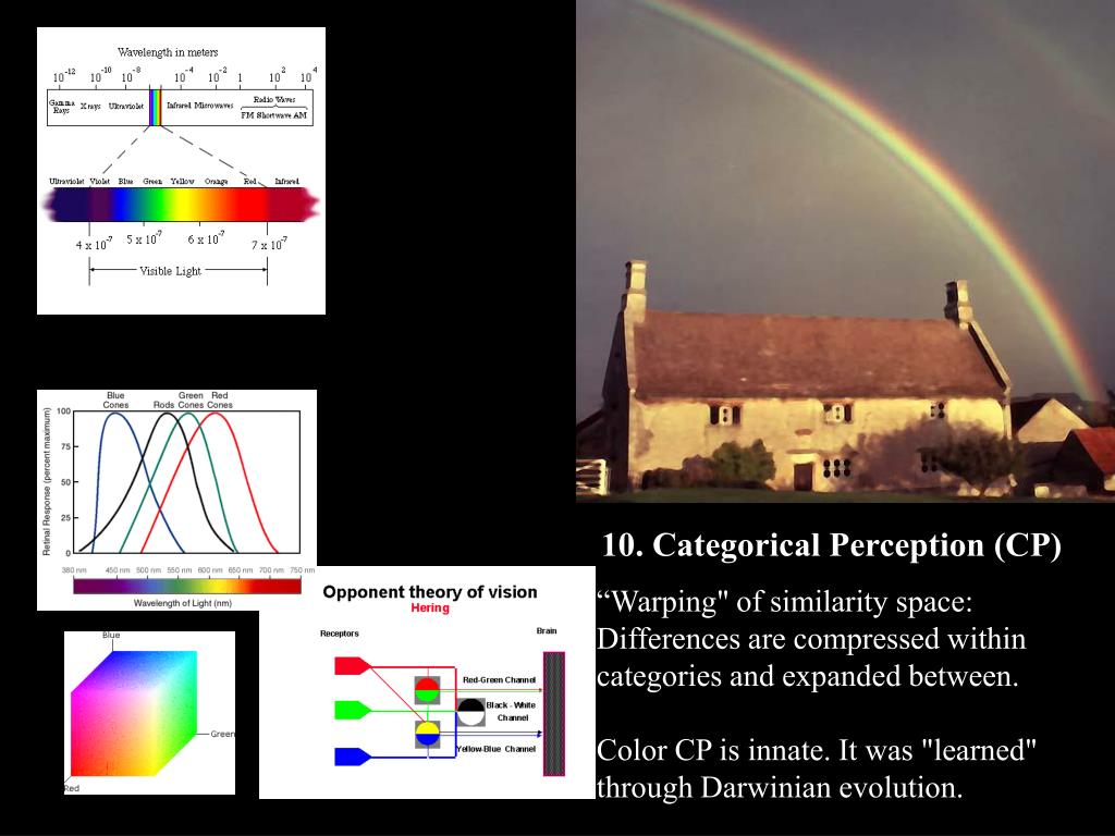 10. Categorical Perception (CP)