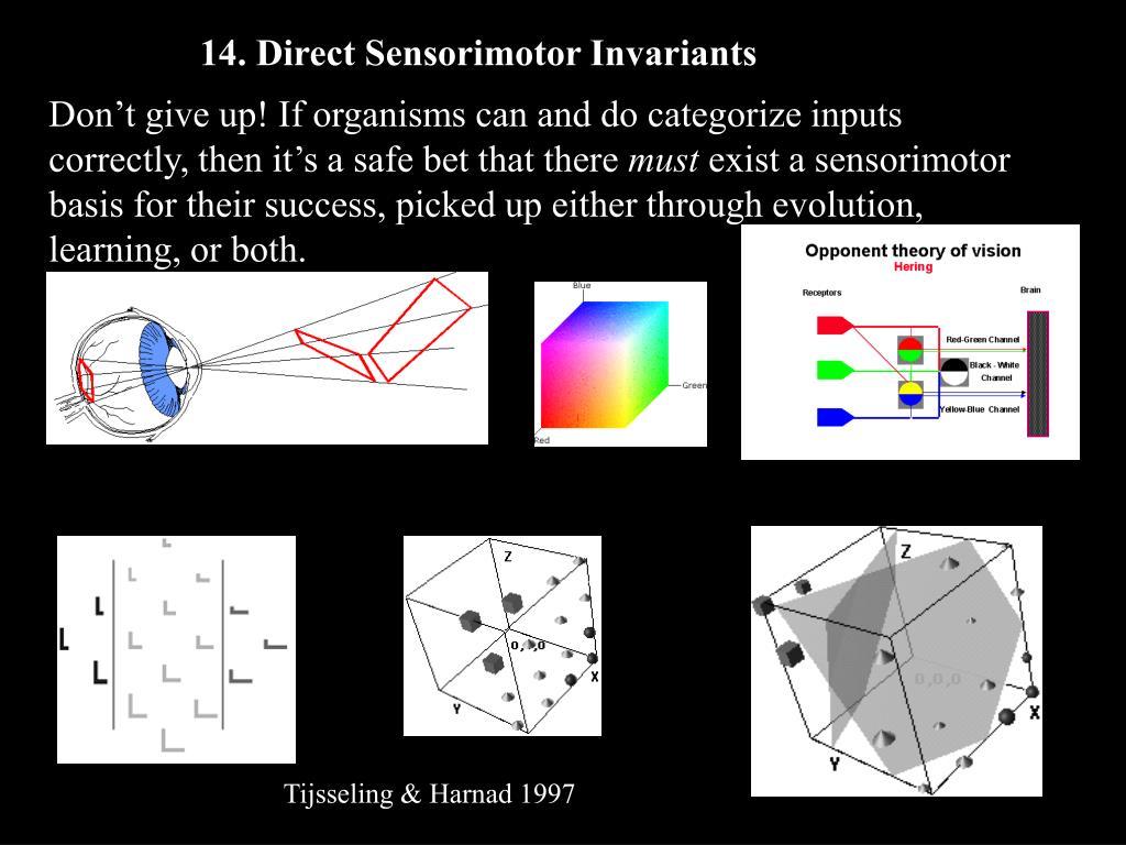 14. Direct Sensorimotor Invariants