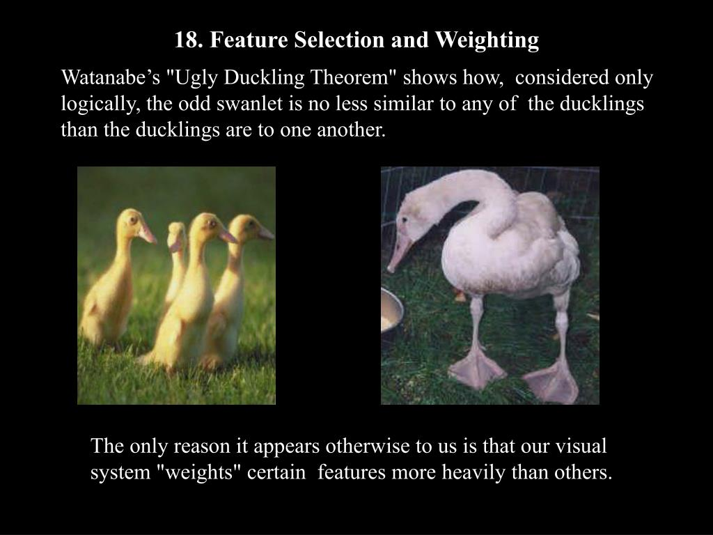 18. Feature Selection and Weighting