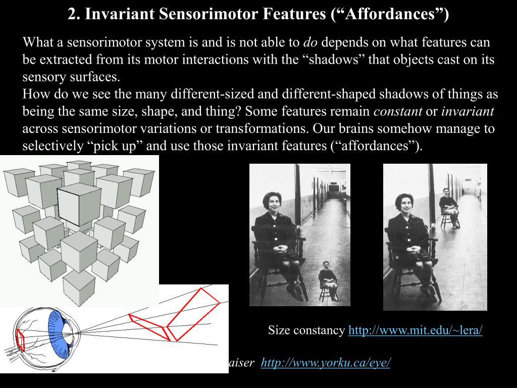 "2. Invariant Sensorimotor Features (""Affordances"")"