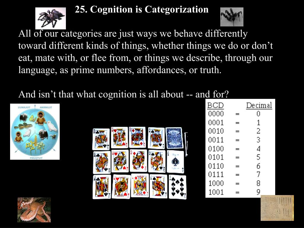 25. Cognition is Categorization