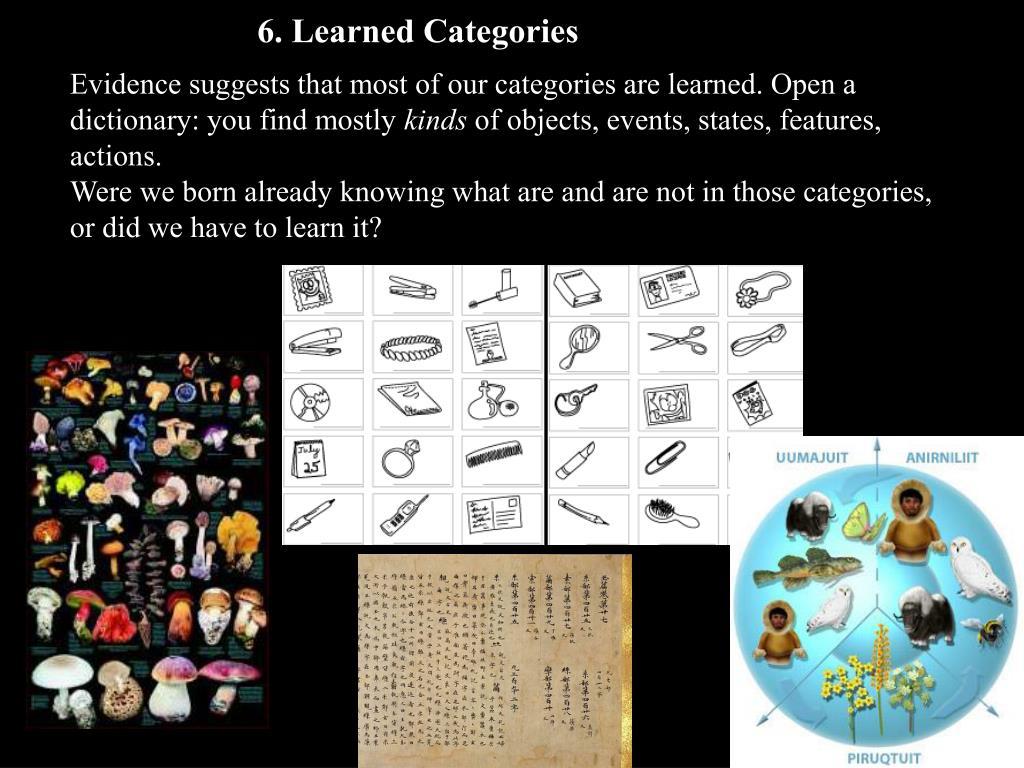 6. Learned Categories