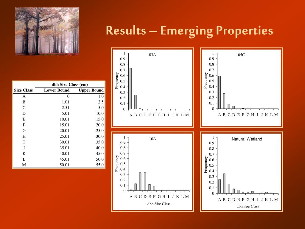 Results – Emerging Properties