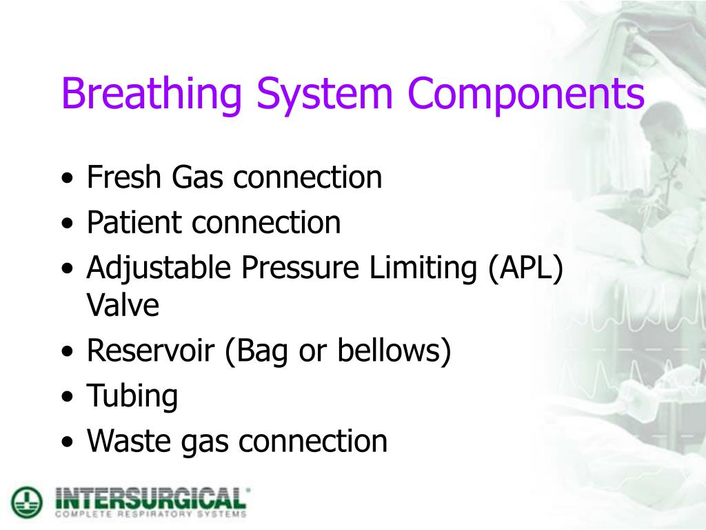 Breathing System Components