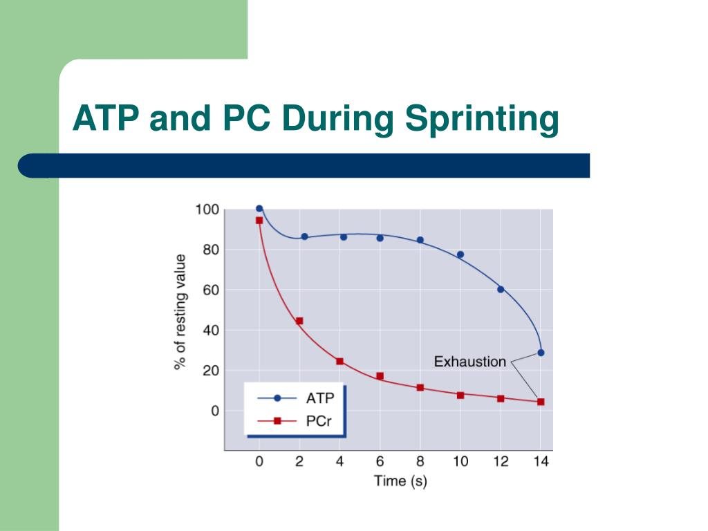 ATP and PC During Sprinting