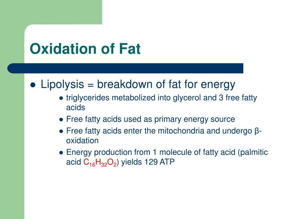 Oxidation of Fat