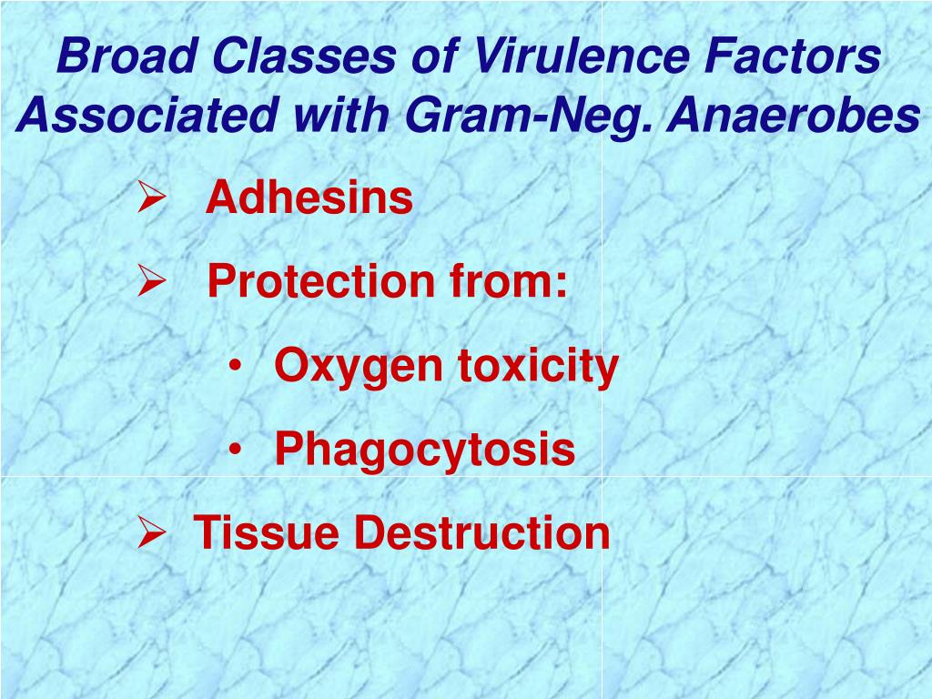 Broad Classes of Virulence Factors Associated with Gram-Neg. Anaerobes