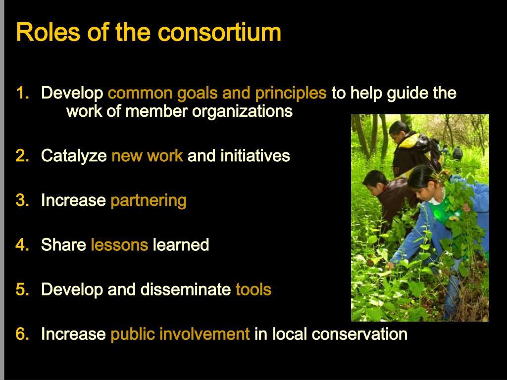 Roles of the consortium