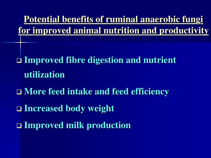 Potential benefits of ruminal anaerobic fungi for improved animal nutrition and productivity