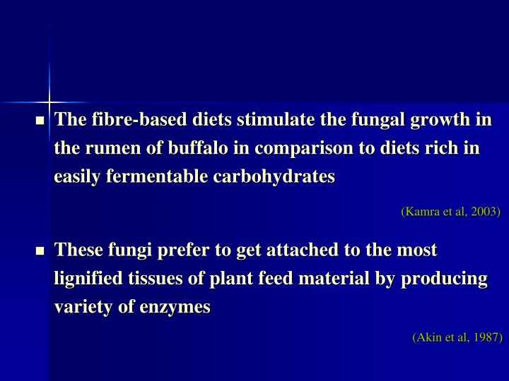 The fibre-based diets stimulate the fungal growth in the rumen of buffalo in comparison to diets rich in easily fermentable carbohydrates