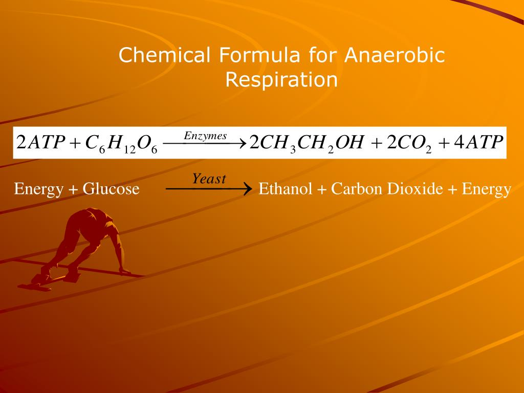 Chemical Formula for Anaerobic Respiration