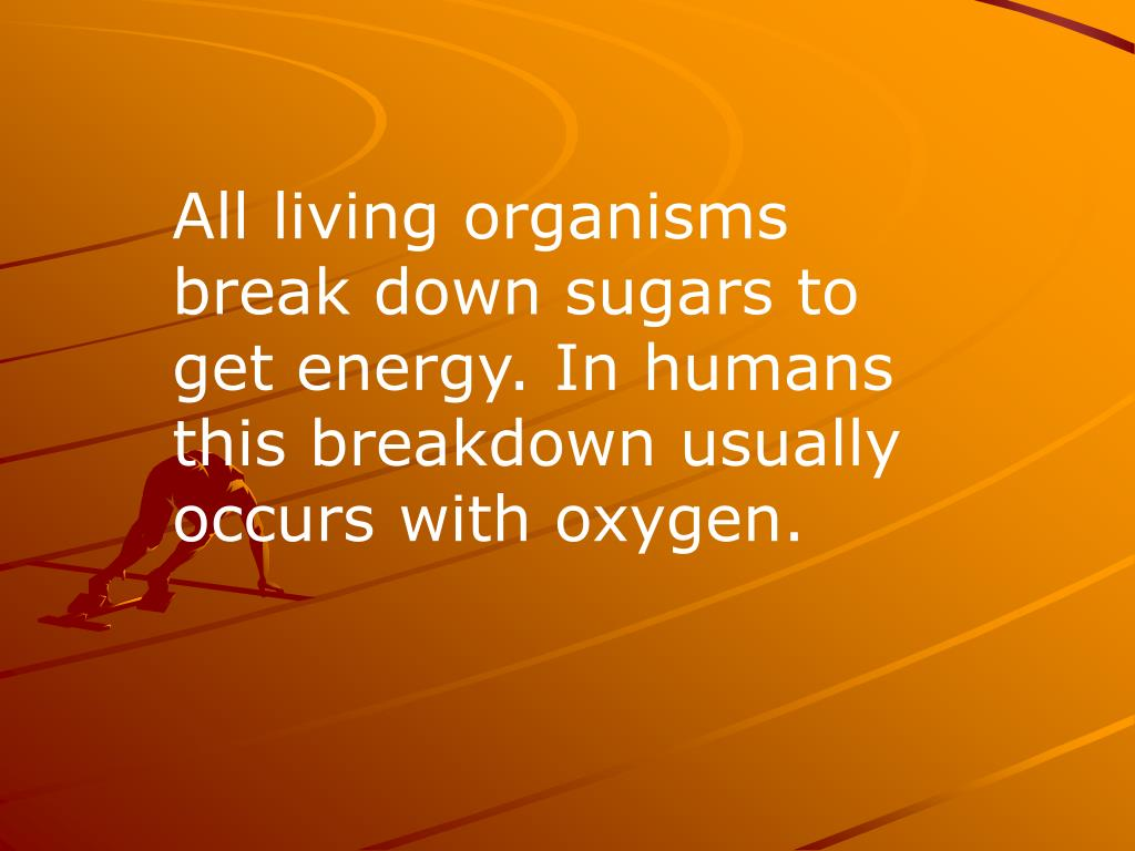 All living organisms break down sugars to get energy. In humans this breakdown usually occurs with oxygen.