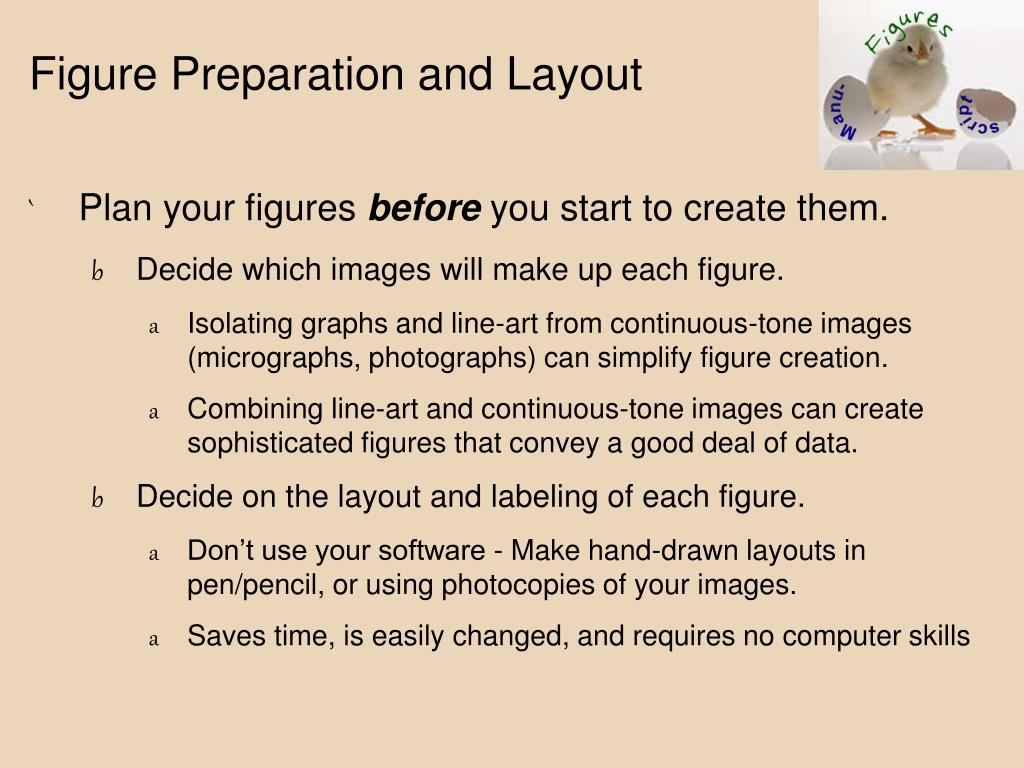 Figure Preparation and Layout