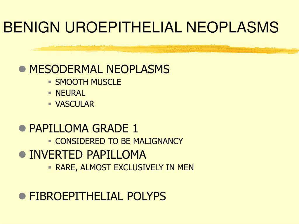 BENIGN UROEPITHELIAL NEOPLASMS
