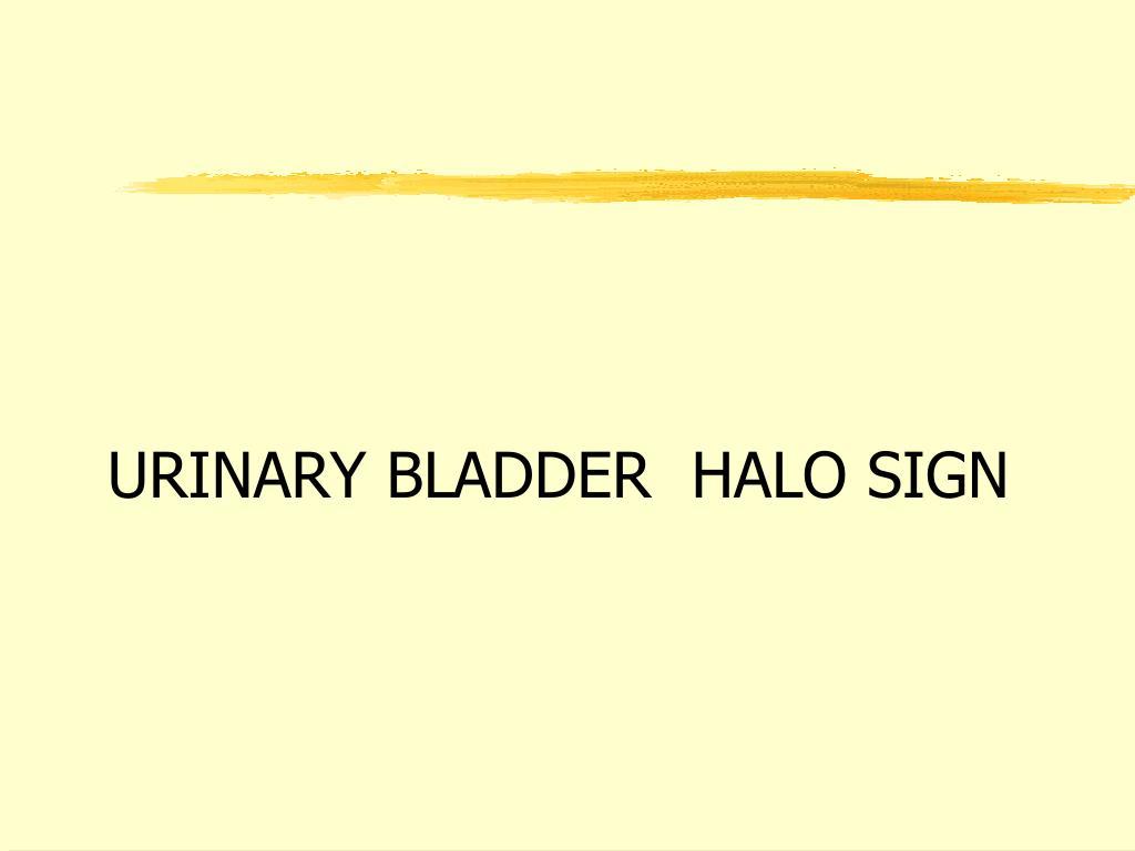 URINARY BLADDER  HALO SIGN