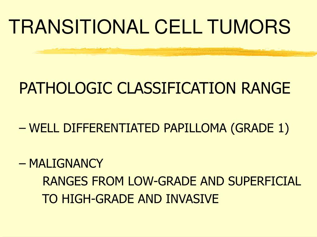 TRANSITIONAL CELL TUMORS