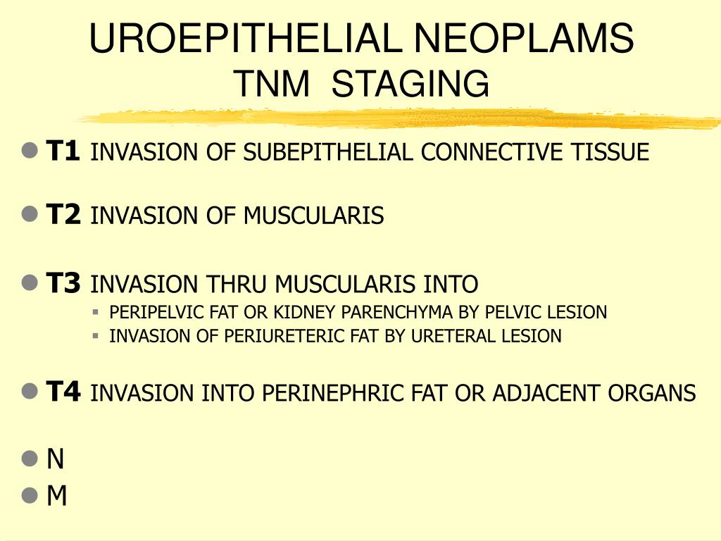 UROEPITHELIAL NEOPLAMS