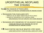 uroepithelial neoplams tnm staging76
