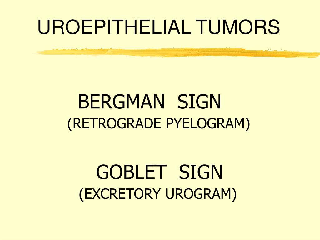 UROEPITHELIAL TUMORS