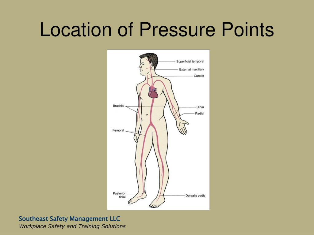 Location of Pressure Points