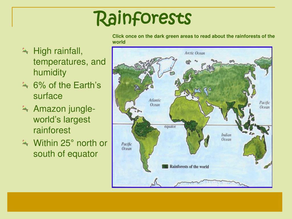 Rainforests