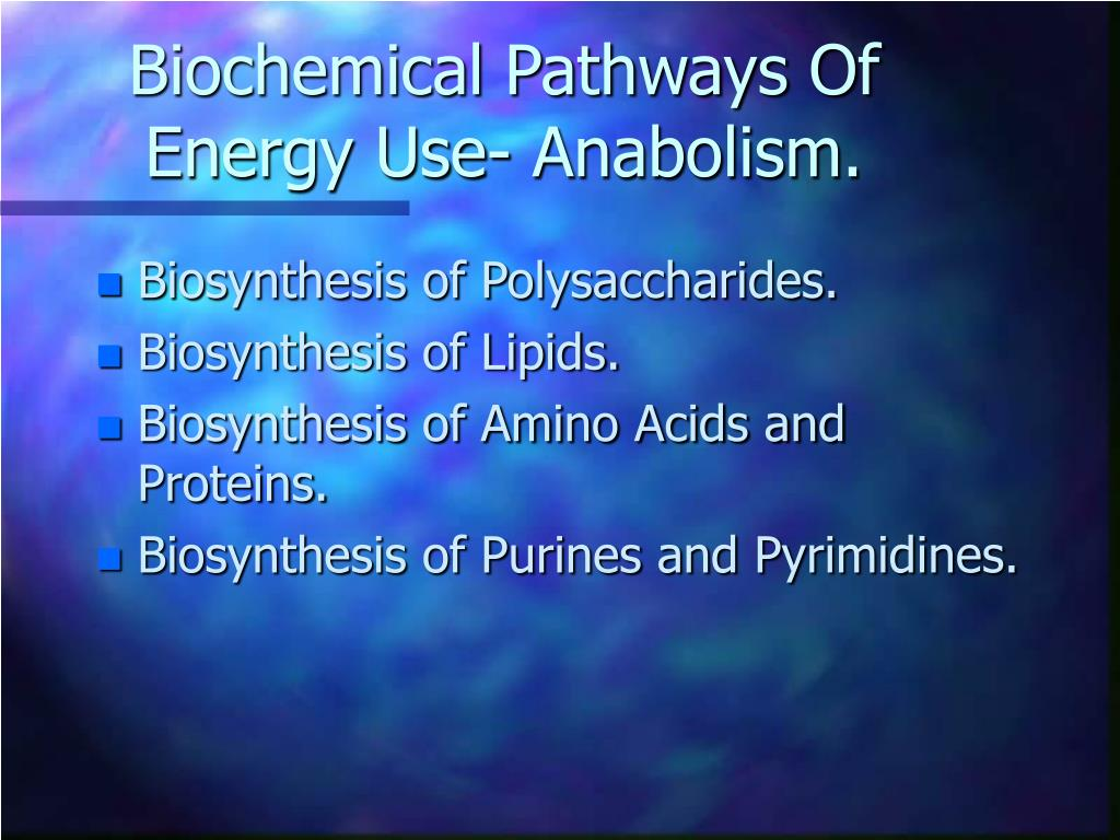 Biochemical Pathways Of Energy Use- Anabolism.