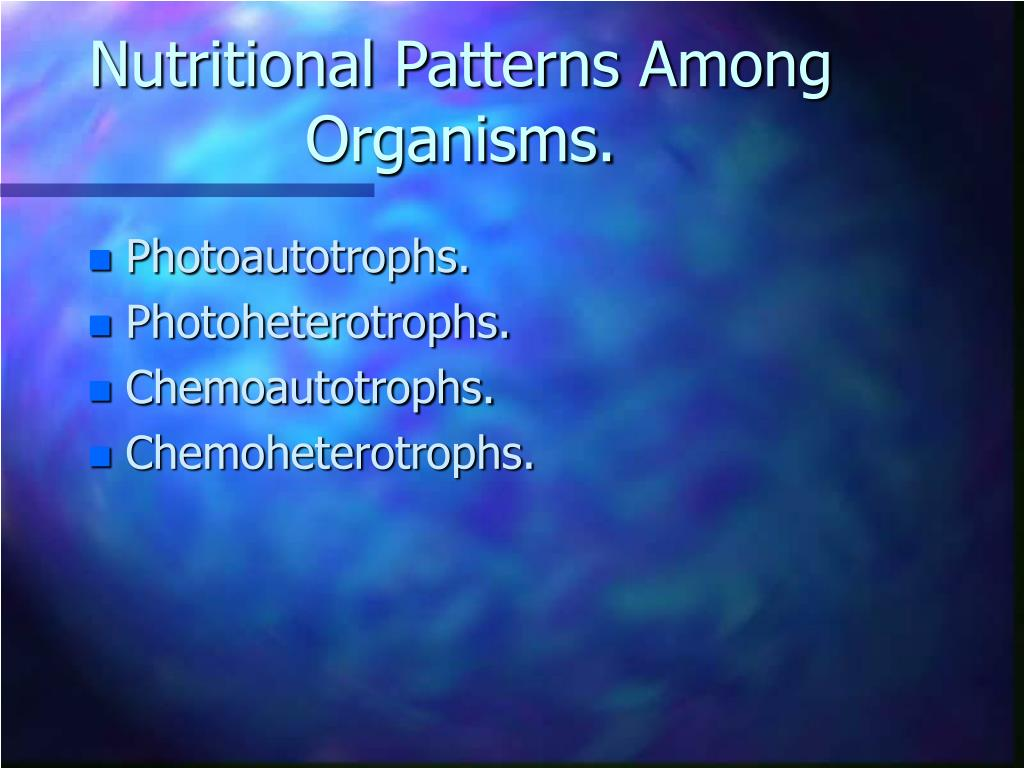 Nutritional Patterns Among Organisms.