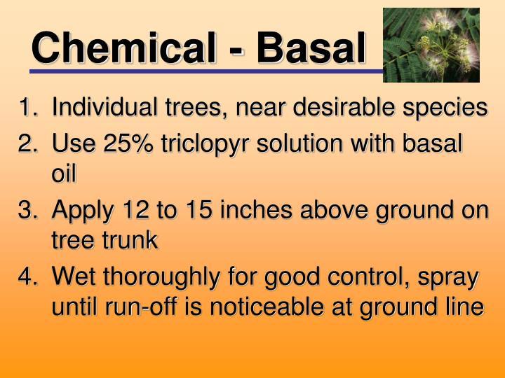 Chemical - Basal