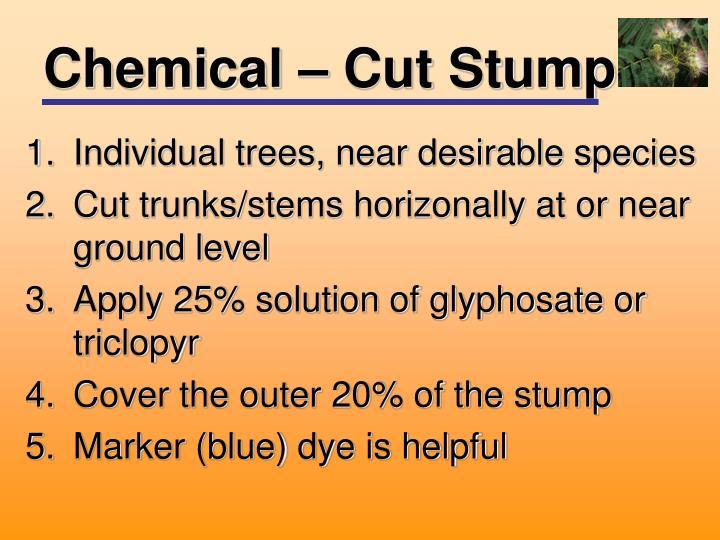 Chemical – Cut Stump