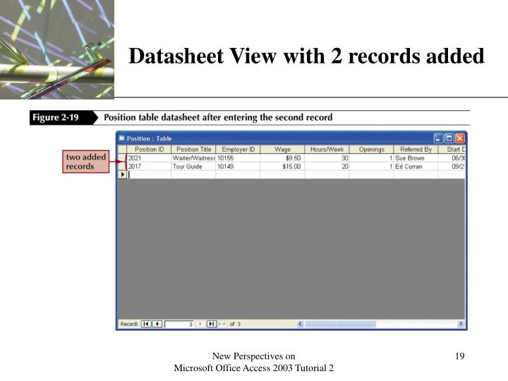 Datasheet View with 2 records added