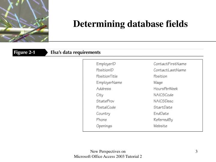 Determining database fields