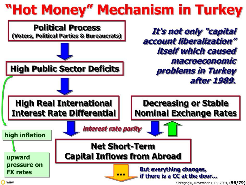 """Hot Money"" Mechanism in Turkey"