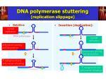 dna polymerase stuttering replication slippage