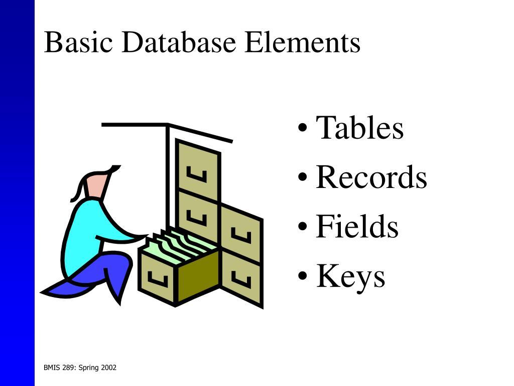 Basic Database Elements