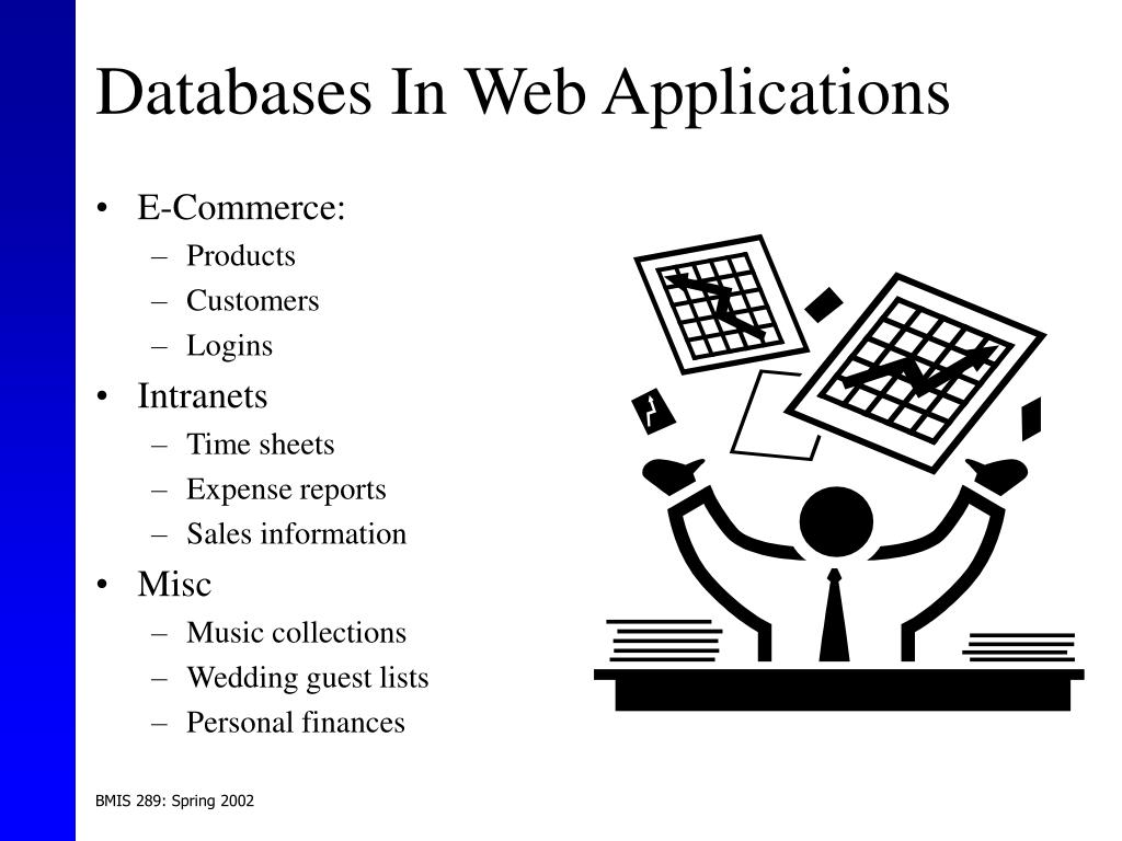 Databases In Web Applications