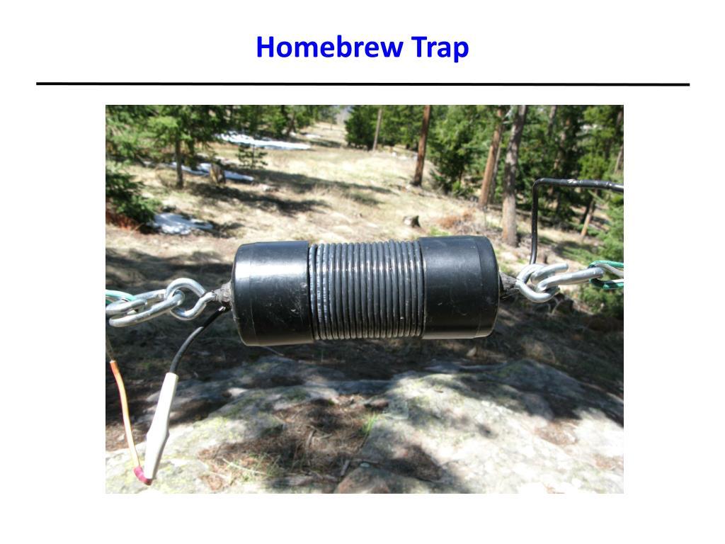 Homebrew Trap