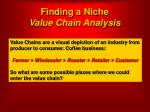finding a niche value chain analysis