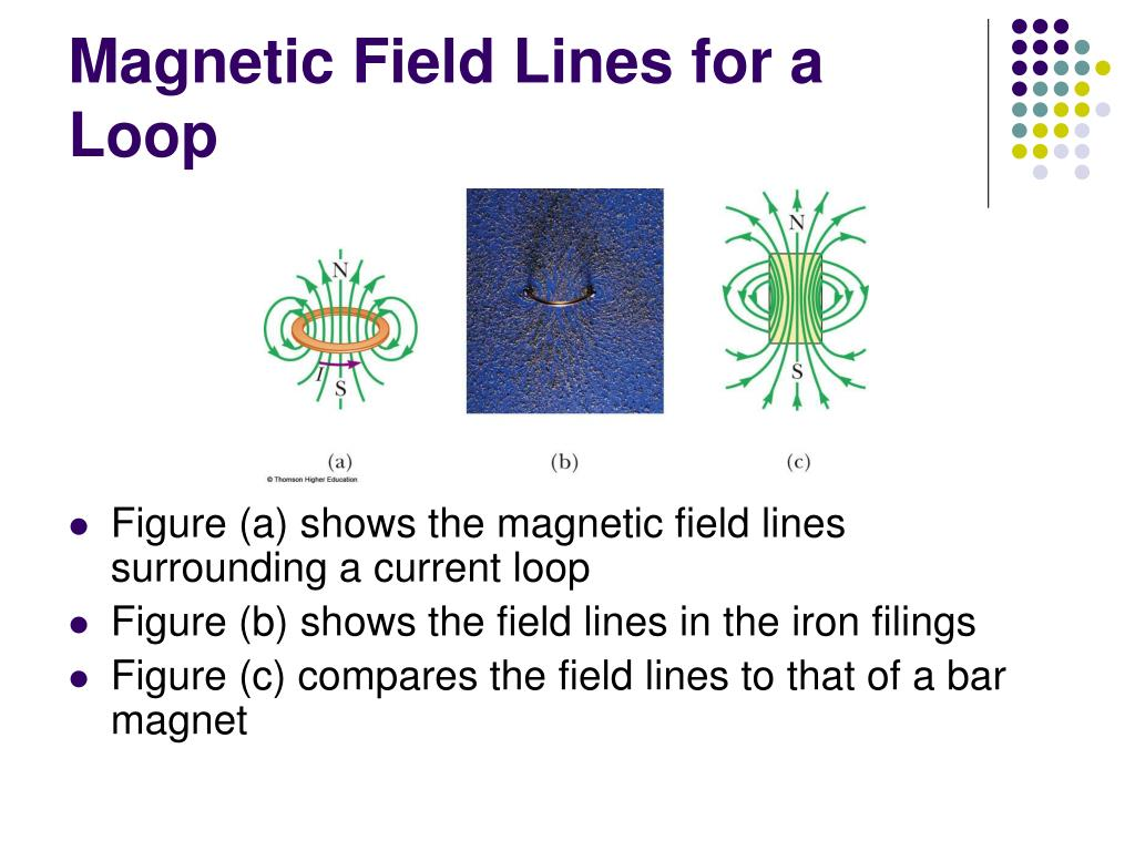 Magnetic Field Lines for a Loop