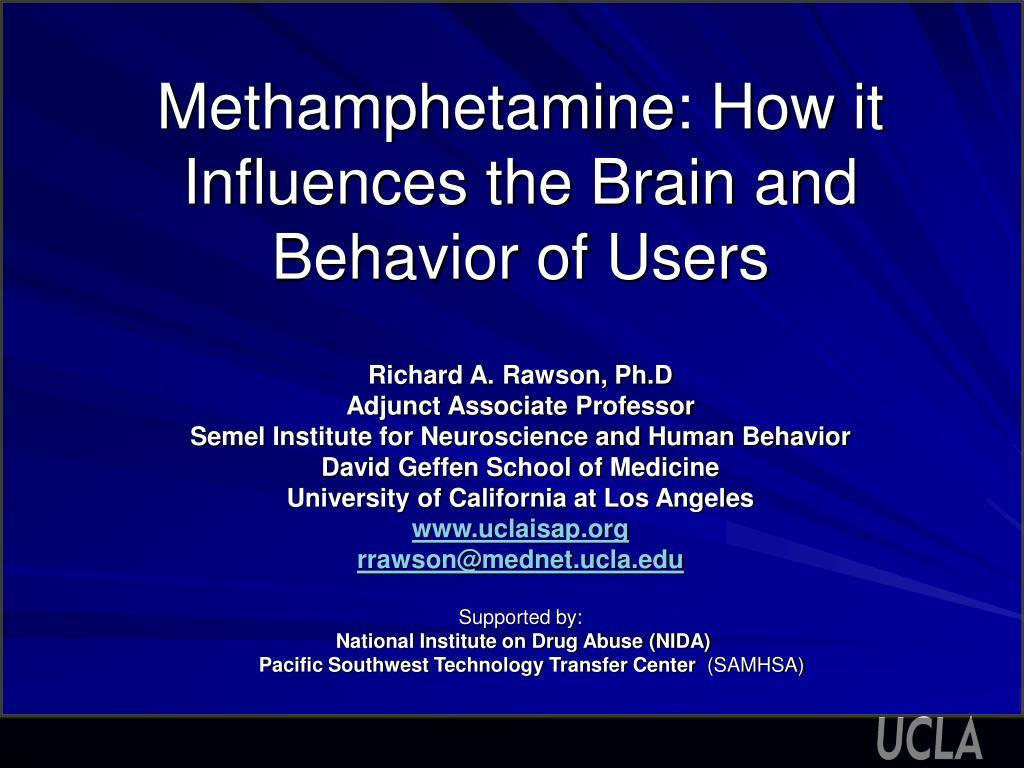 methamphetamine how it influences the brain and behavior of users