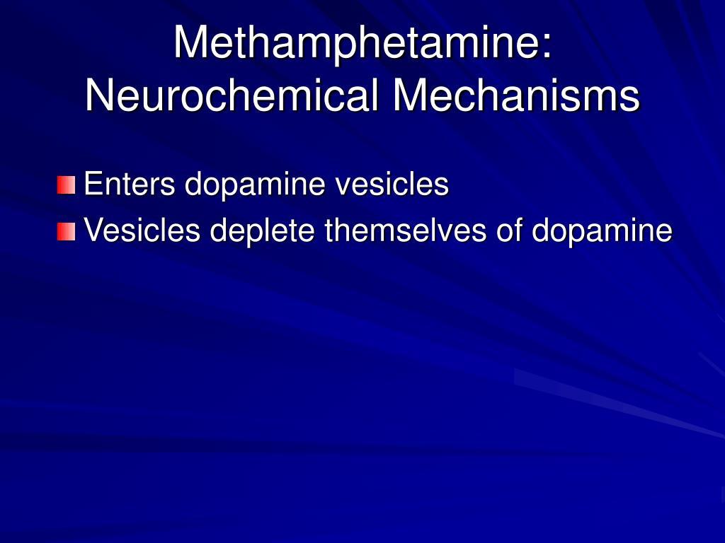 Methamphetamine: Neurochemical Mechanisms