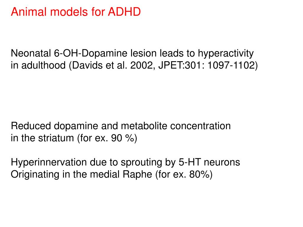 Animal models for ADHD